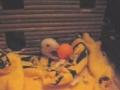 Ratazana e bola de ping-pong