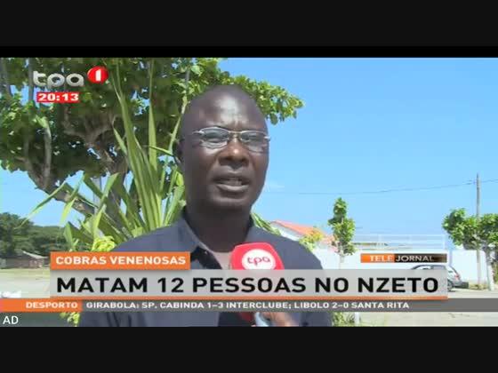 Cobras venenosas matam 12 pessoas no Nzeto